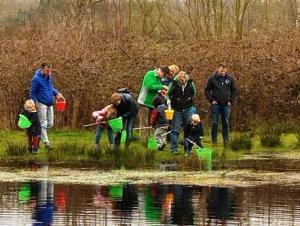 2015.04.06 Waterbeestjes scheppen normaal