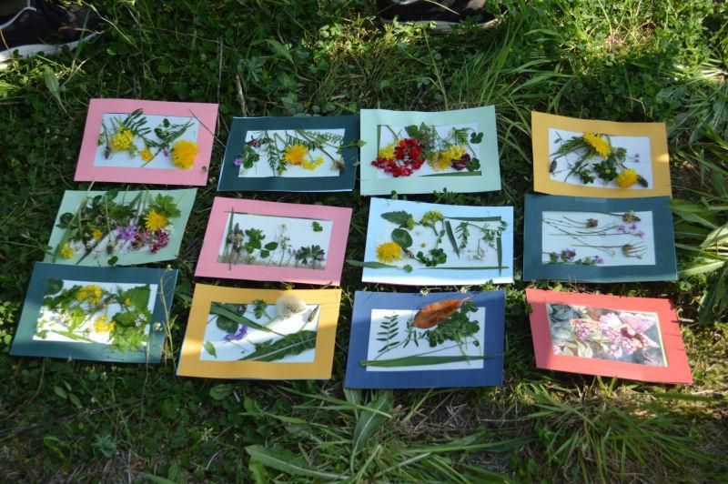 bloemschilderijtjes